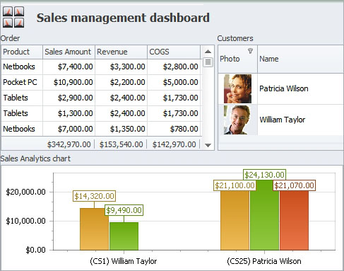 Sales Management Software Dashboard